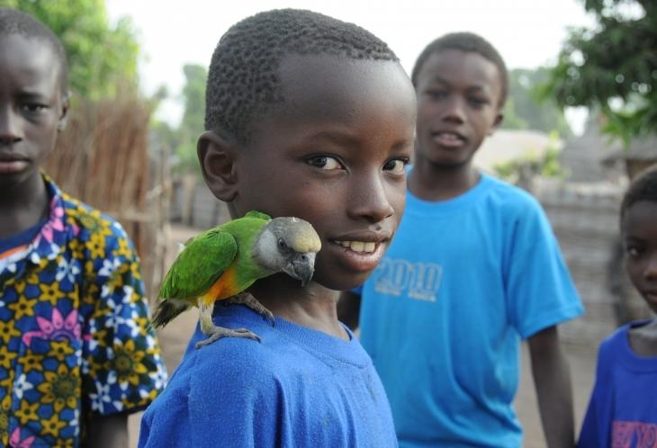 rencontre afrique sénégal